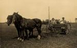 Såning med heste